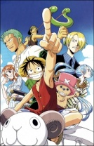 One Piece Cover