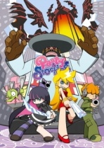 Panty and Stocking Cover
